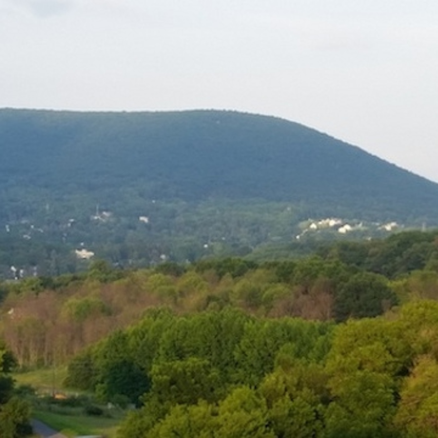 Mount Nittany Is Calling You