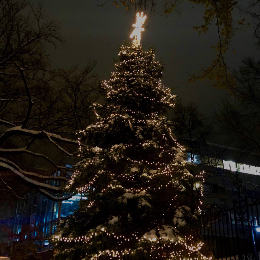 Tree Lighting Kicks Off Holiday Season in Downtown State College
