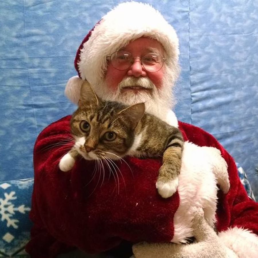Pets Come First Events to Bring Holiday Cheer to Furry Friends and Families