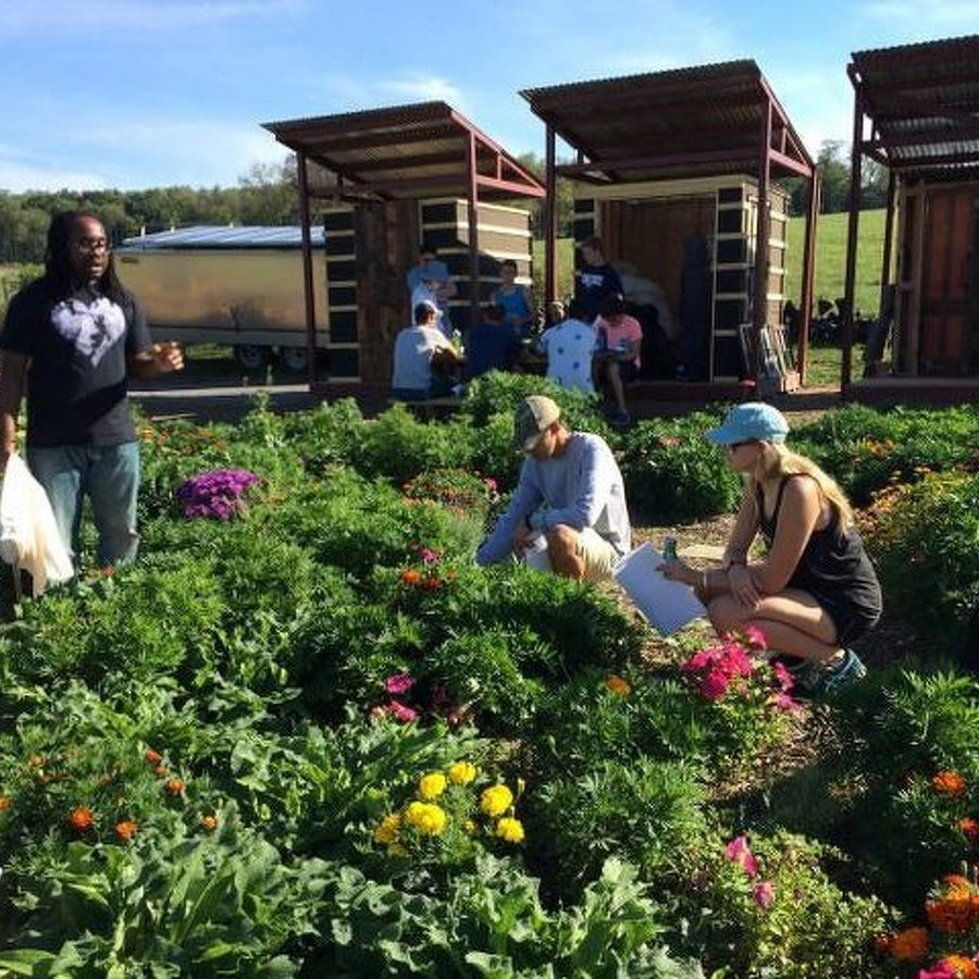 Centre County Farm Tour a Chance to Experience Region's Agriculture for Free