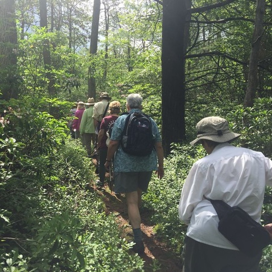 Hiking Group Keeps Older Adults Active All Year Long