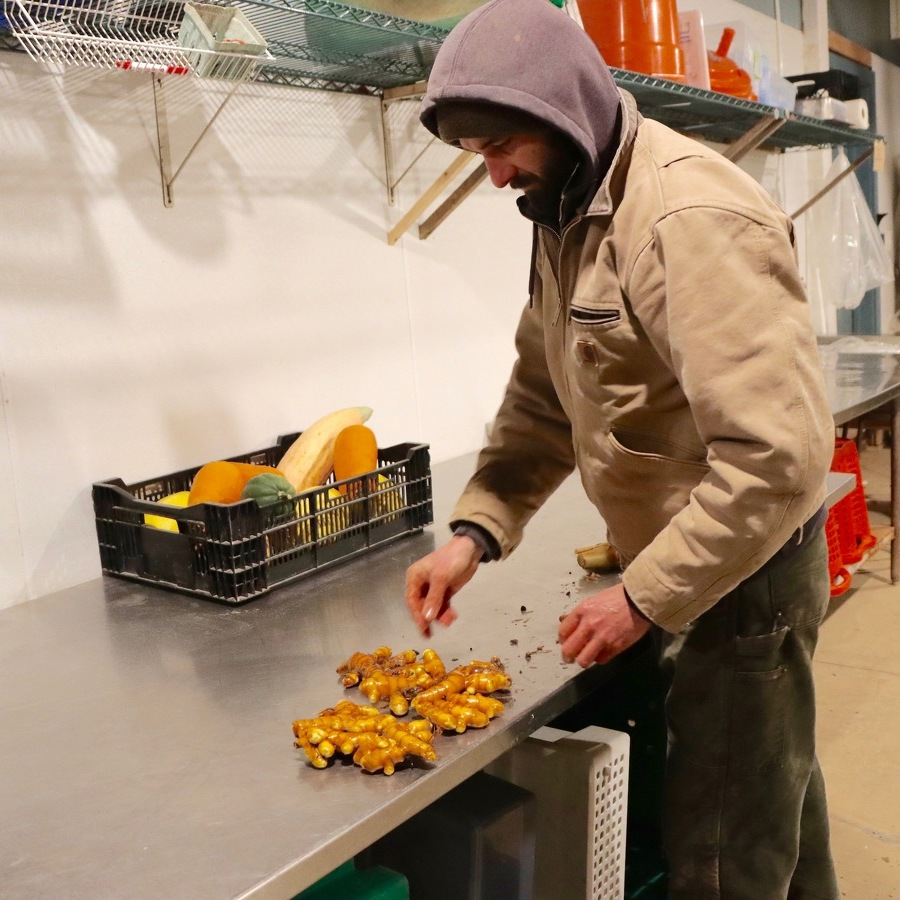 Local Farm Cultivating the Benefits of Turmeric