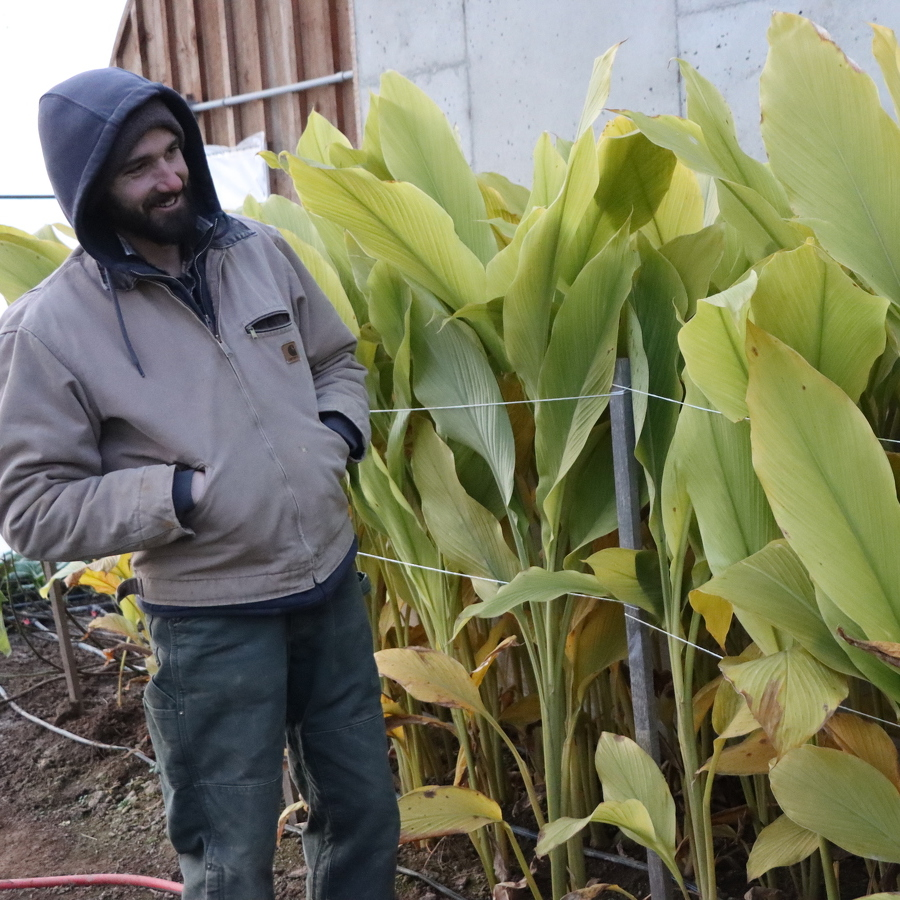 Local Farmers Work in the Winter to Provide Healthy Food Year-Round