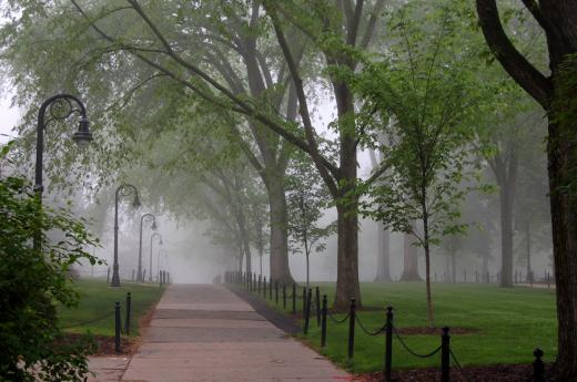 Severe Thunderstorm Warning Issued In State College Area