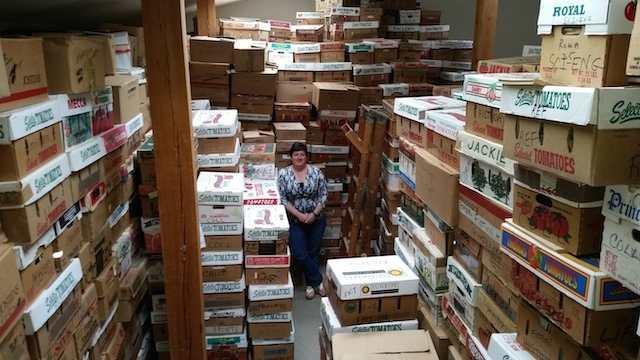 Everything You Ever Wanted to Know About the AAUW Booksale (Including the Tomato Boxes)