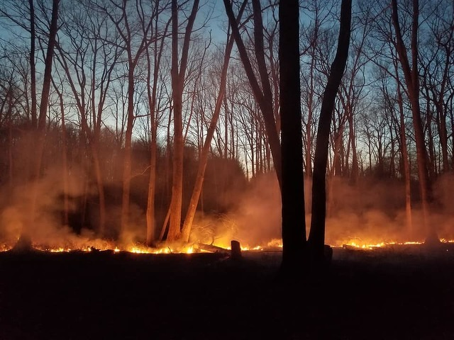 Crews Continue Work to Suppress 700-Acre Wildfire in Centre County