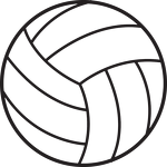 Eight local athletes earn volleyball honors