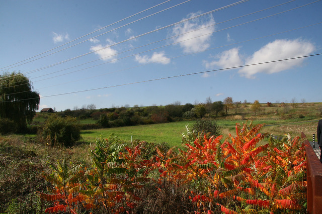 Community Input Sought for Future of Musser Gap Property
