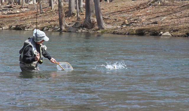State College, PA - Trout Fishing Opens on County Streams