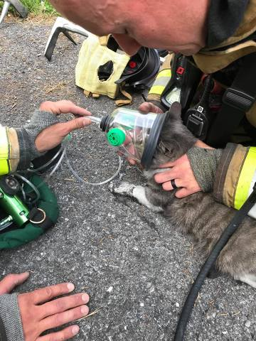 Alpha Firefighters Save a Ferguson Township Home, and a Pet