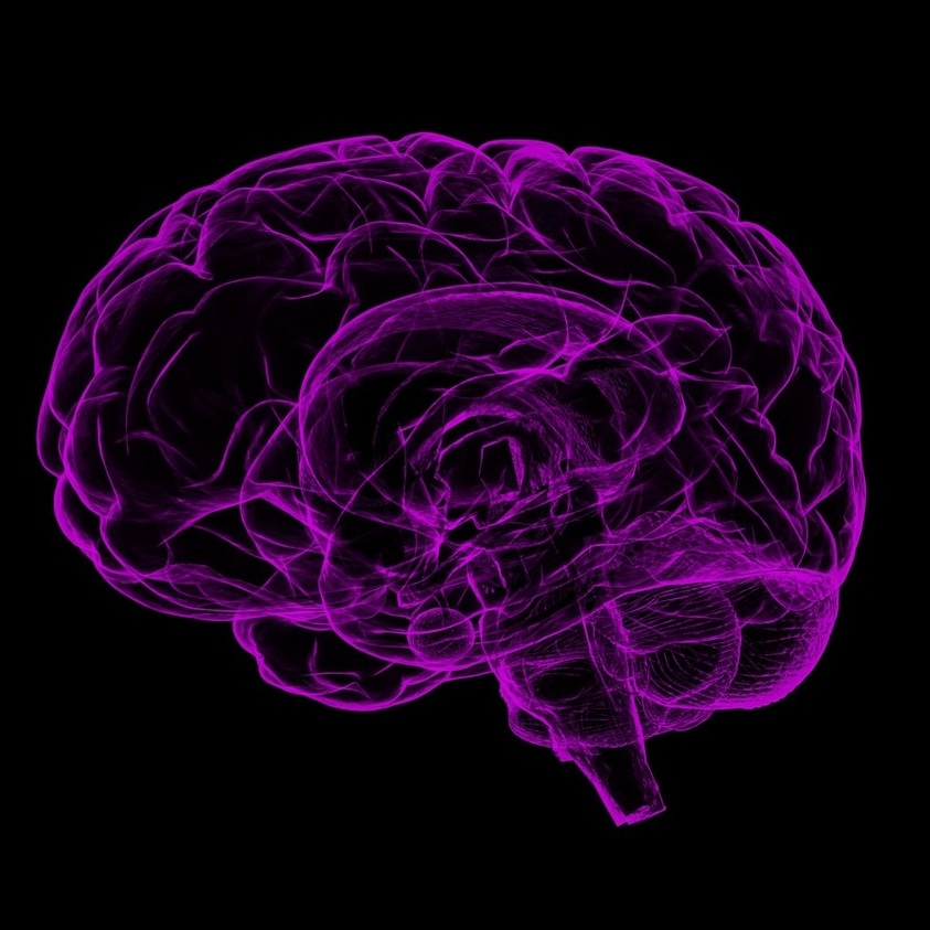 Words matter when talking about Alzheimer's, Penn State researchers say