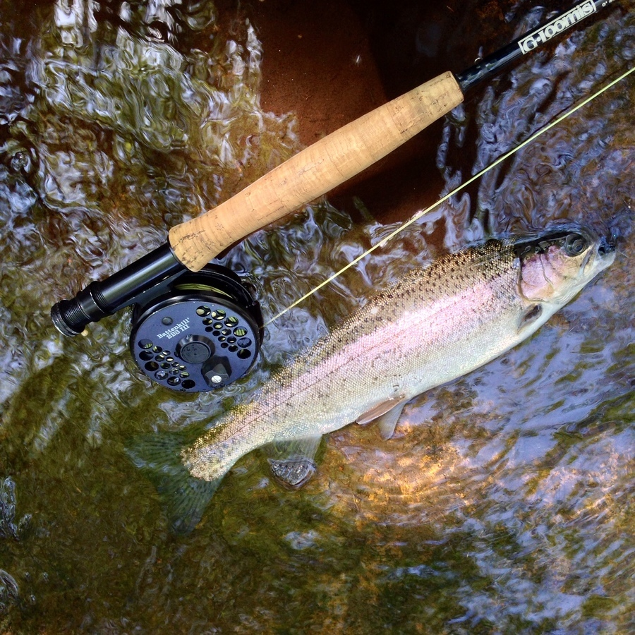 Trout Season Is So Much More Than Just the Catch