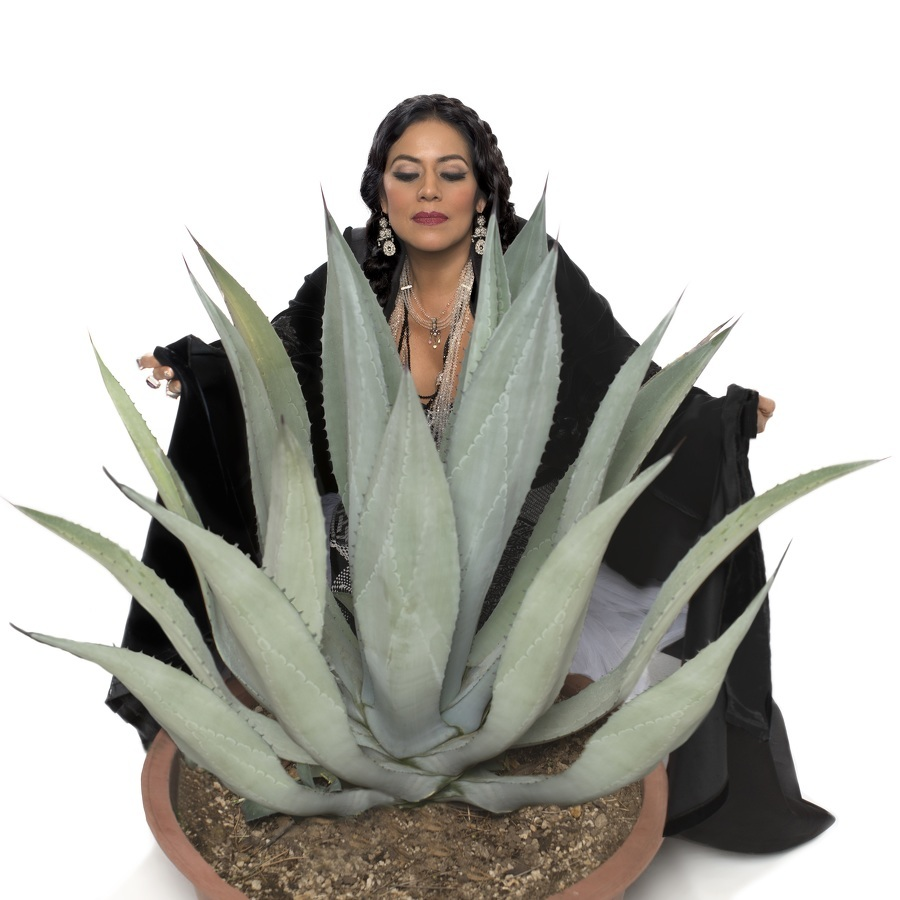 On Center: Mexican American Lila Downs tells impassioned stories through song
