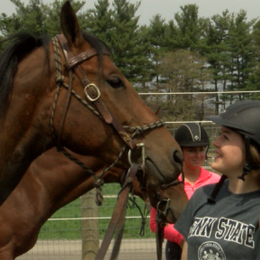 Students Take the Lead for Penn State Quarter Horse Sale