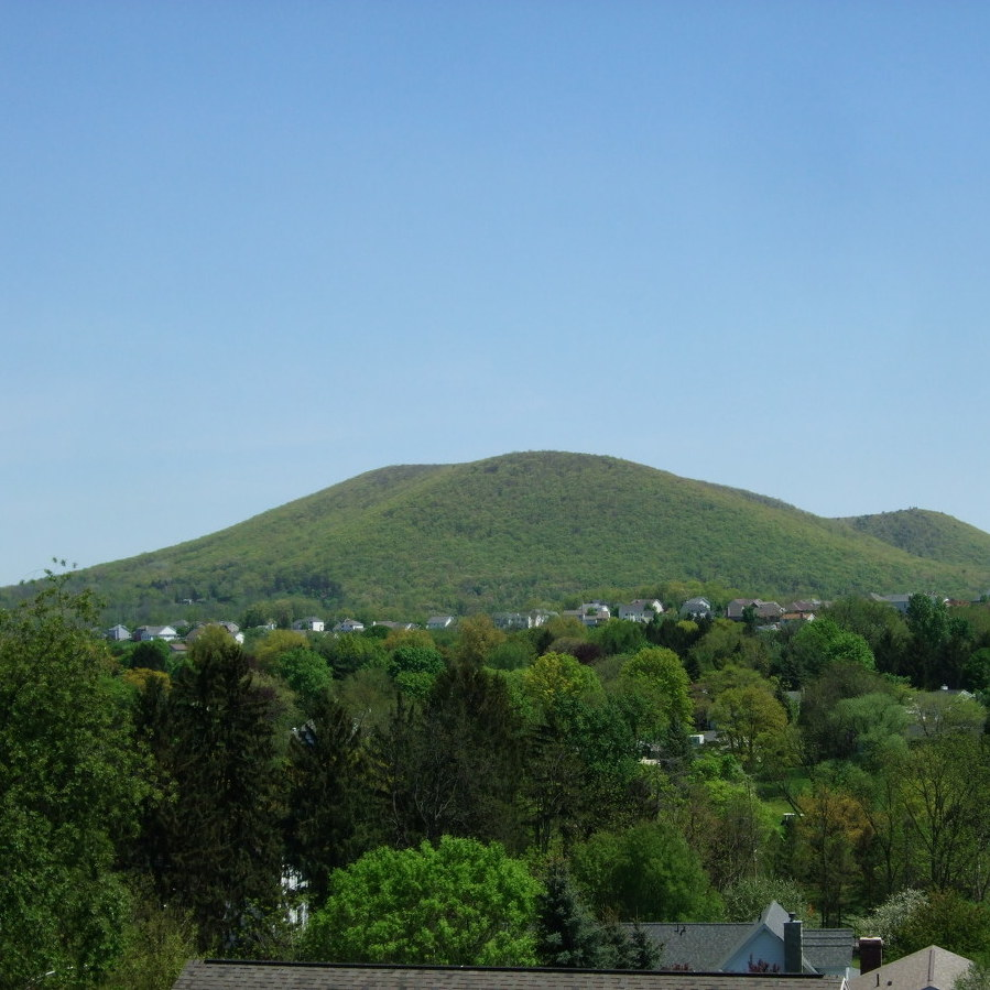 A Celebration of Mount Nitttany