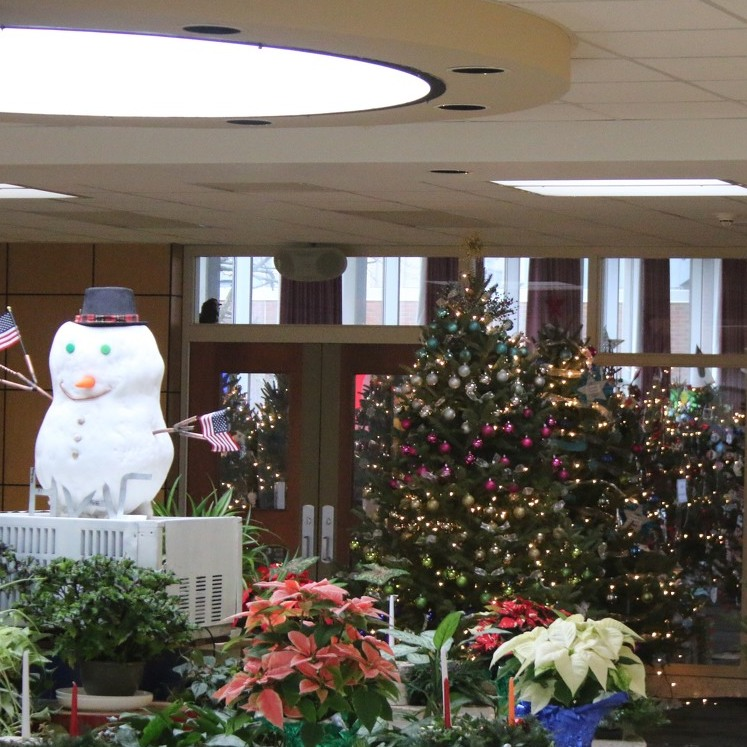 Festival of Trees to Once Again Light Up the Holiday Season at CPI