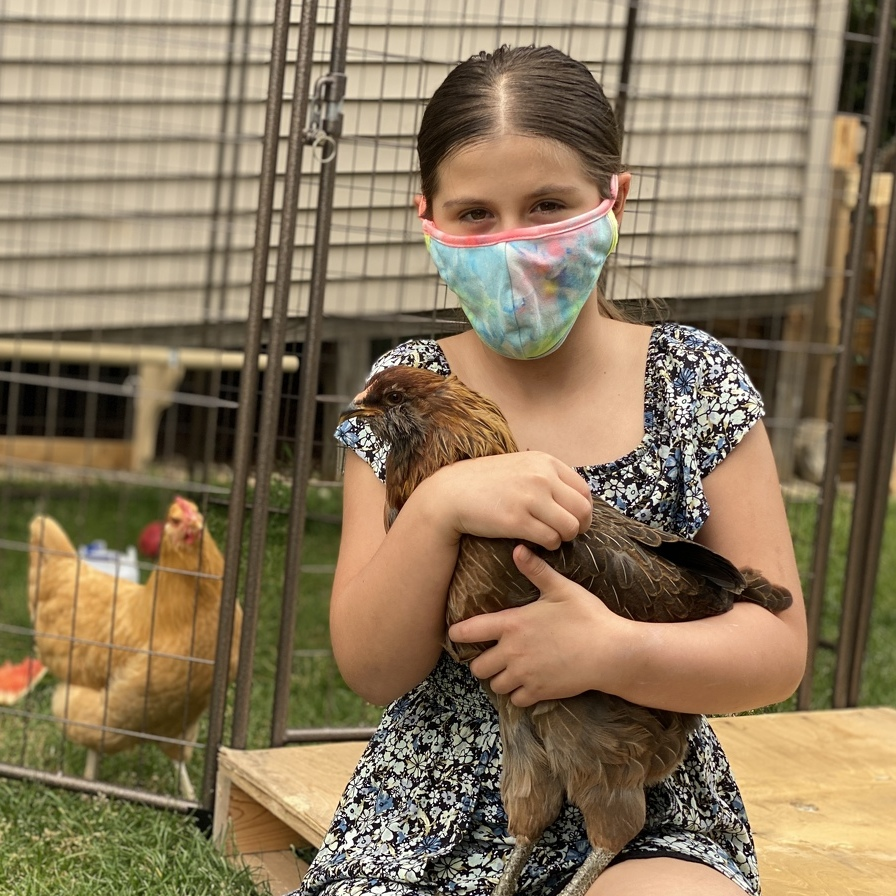 10-Year-Old and Family Battle College Township to Save Pet Chickens