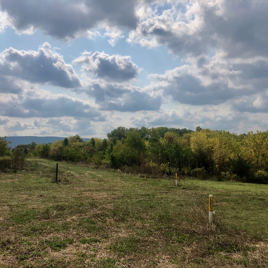 Commercial Development Near Bellefonte Expected to Create Hundreds of New Jobs