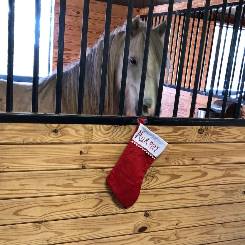 Rising Hope to Host 'Christmas at the Barn'